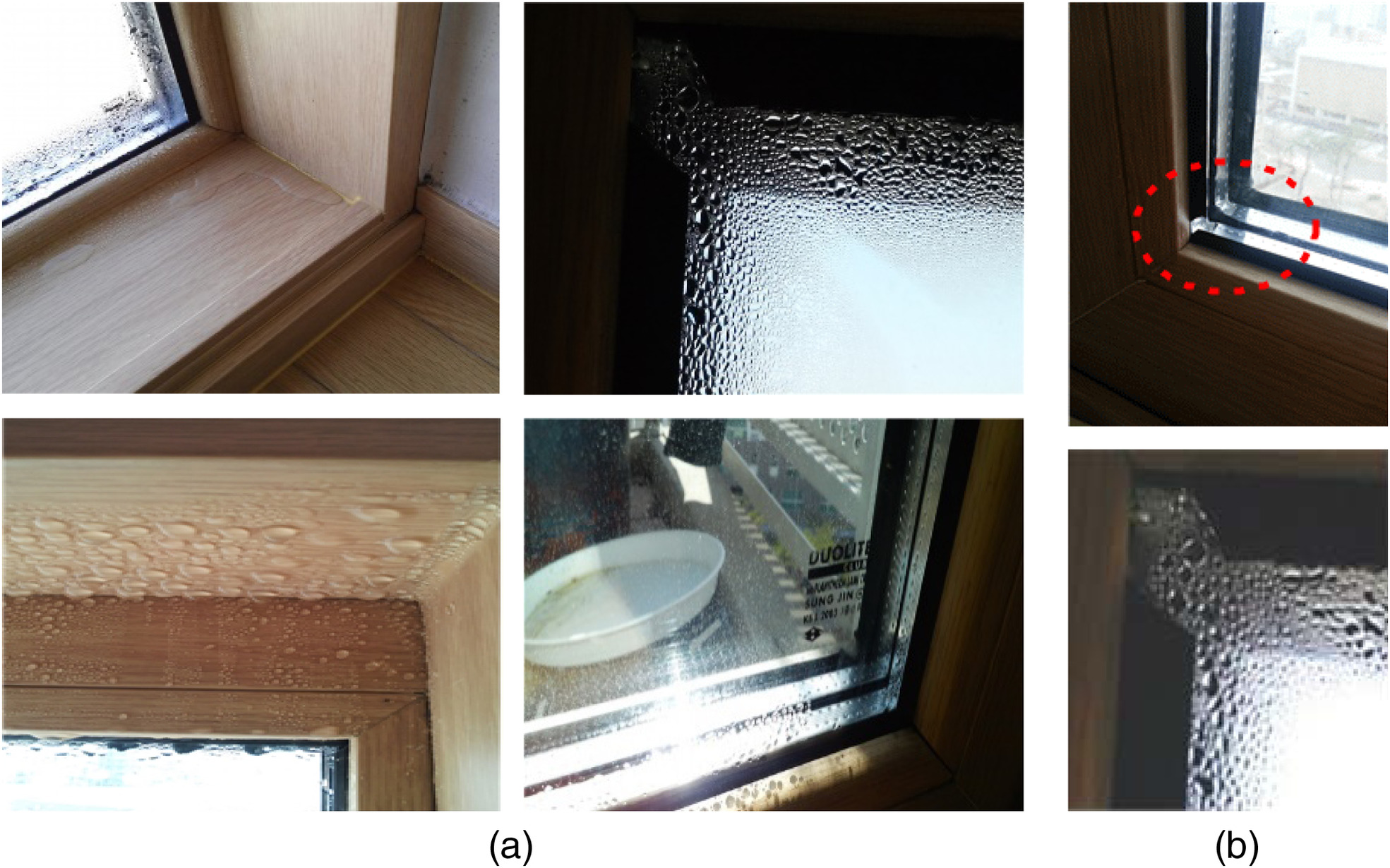 Case Study On The Inspection And Repair Of Window Condensation Problems In A New Apartment Complex Journal Performance Constructed Facilities Vol