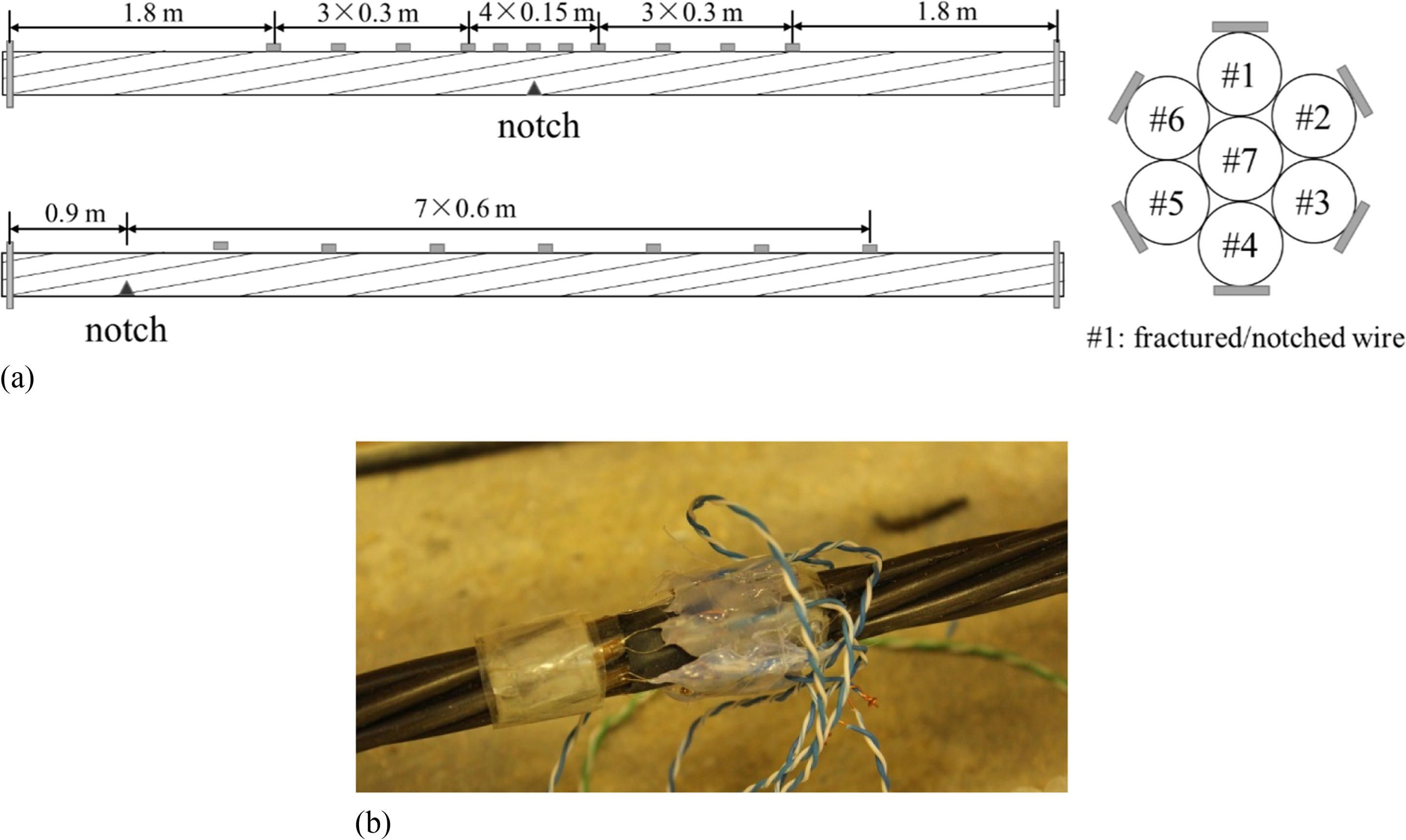 Influence Length of Wire Fracture and Wire-to-Wire Interaction in ...