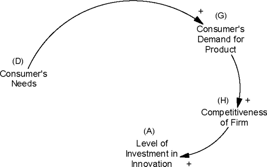 Tailoring Competitive Advantages Derived from Innovation to the