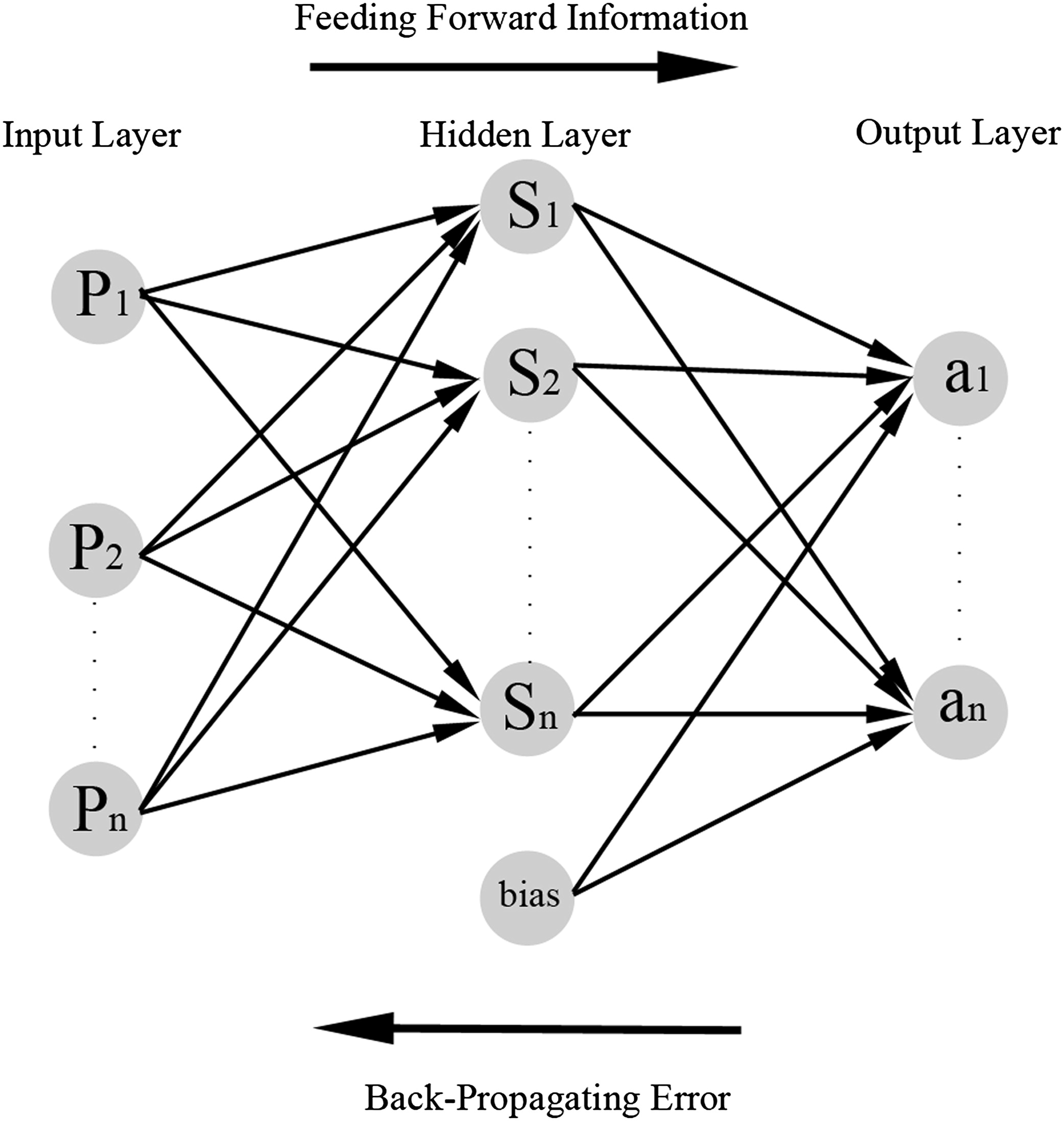 Application of an Artificial Neural Network for Modeling the