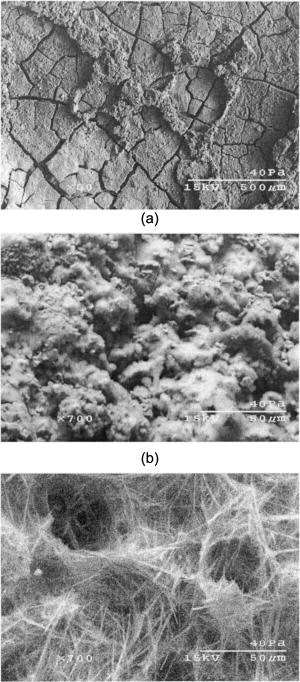Reclaimed Hydrated Fly Ash As a Geomaterial | Journal of Materials