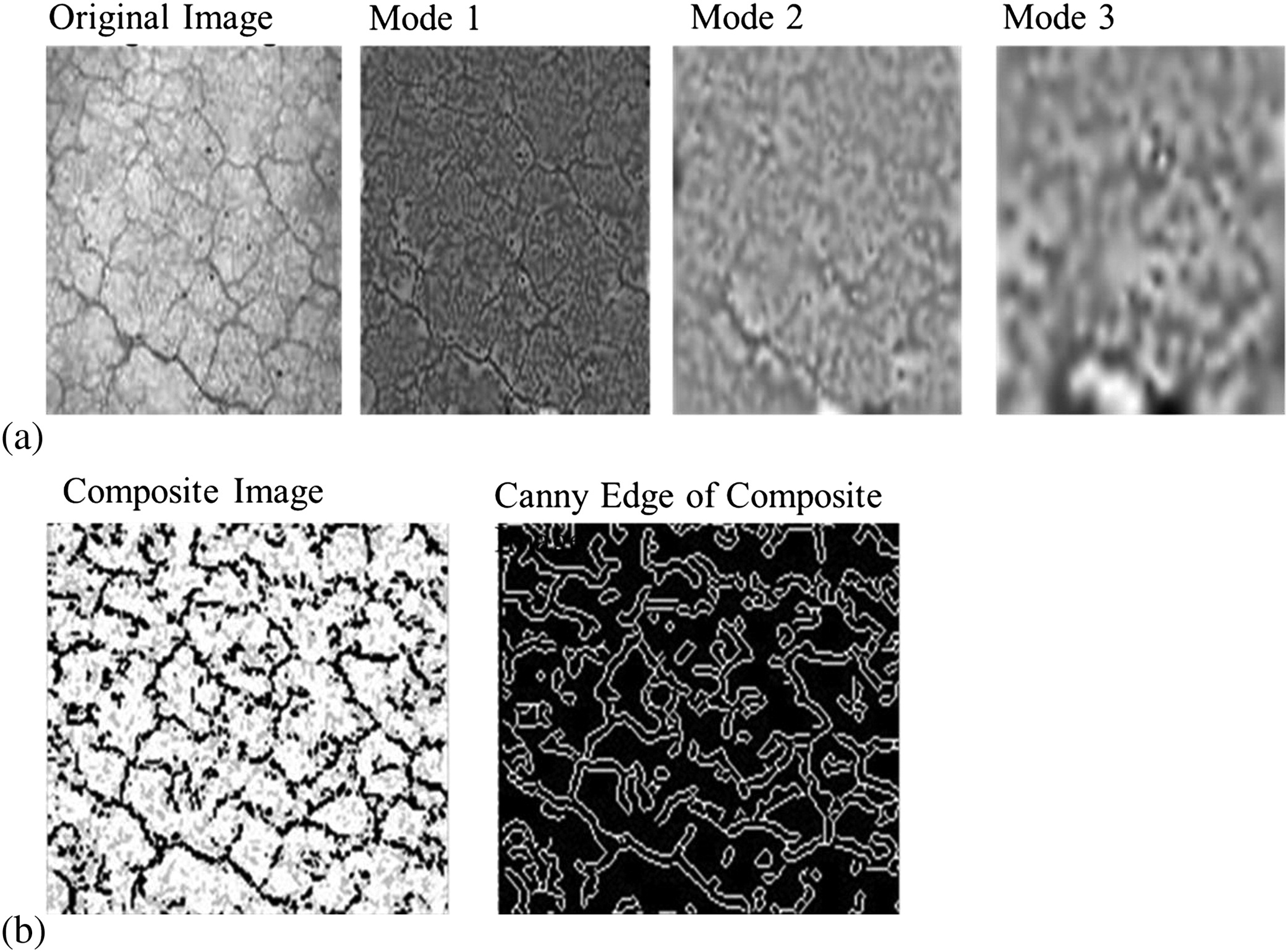 Functional Evaluation of Pavement Condition Using a Complete Vision