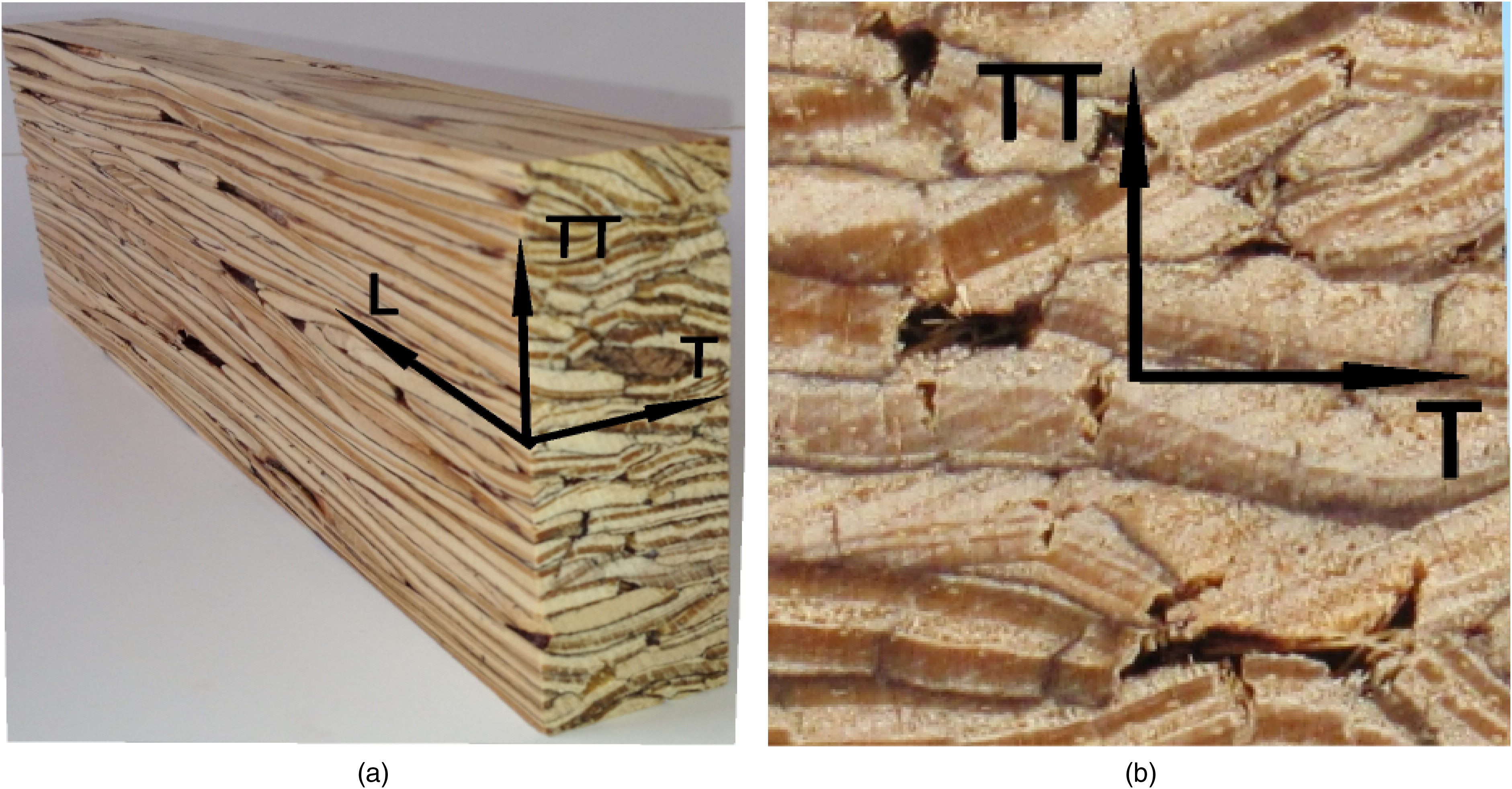 Characterization And Probabilistic Modeling Of The Mesostructure Parallel Strand Lumber Journal Materials In Civil Engineering Vol 27 No 6