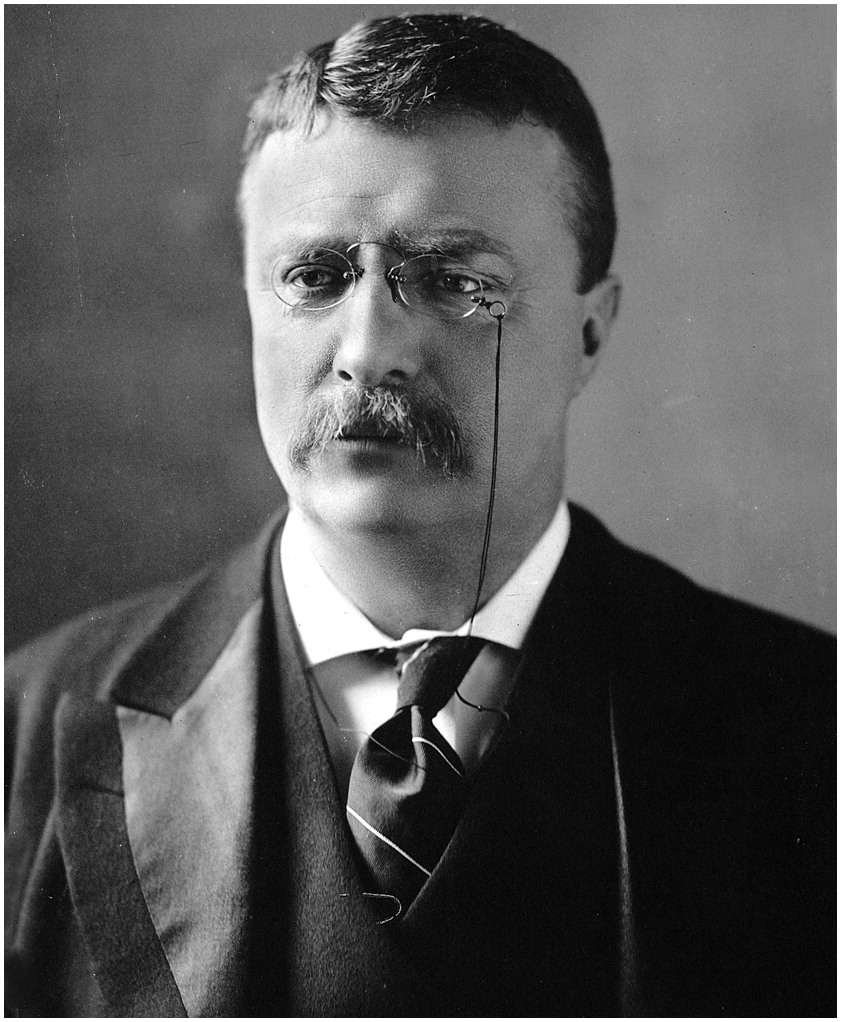 Citizenship, Character, and Leadership: Guidance from the Words of Theodore Roosevelt | Leadership and Management in Engineering | Vol 13, No 4
