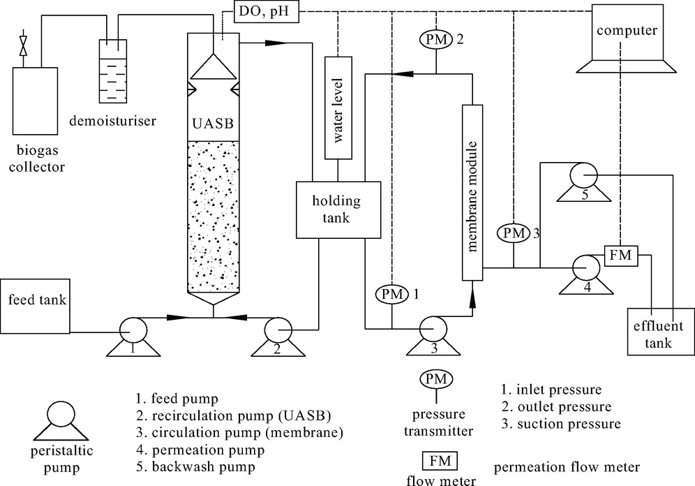 Municipal Wastewater Treatment Using a UASB Coupled with