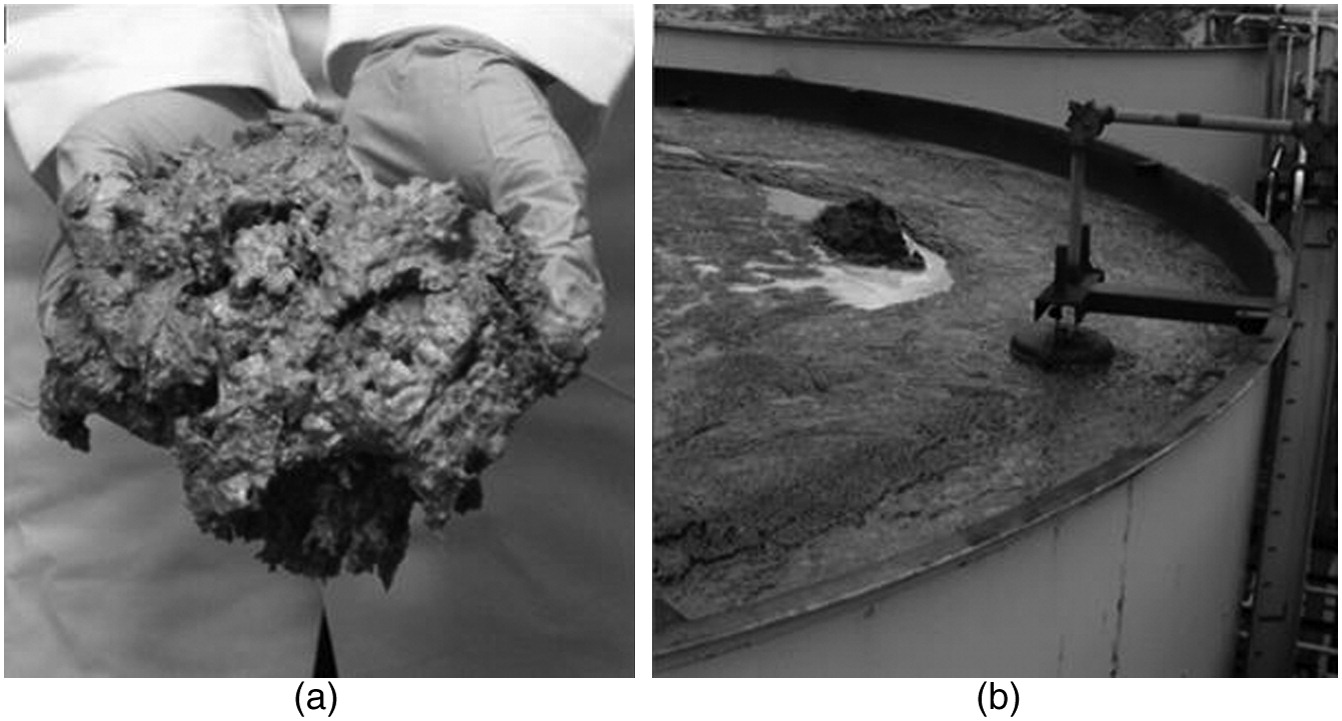 Physicochemical Characterization of Sludge Originating from