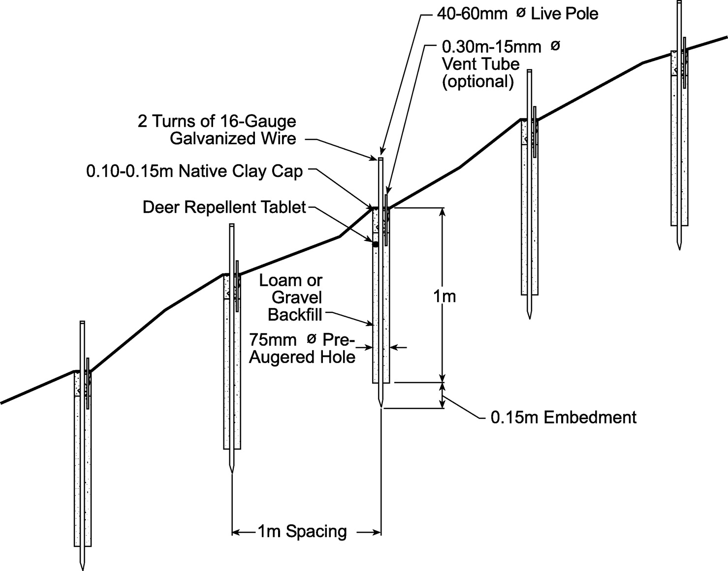 Use of Live Poles for Stabilization of a Shallow Slope Failure