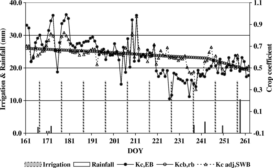 Estimating Water Requirements of an Irrigated Mediterranean Vineyard on