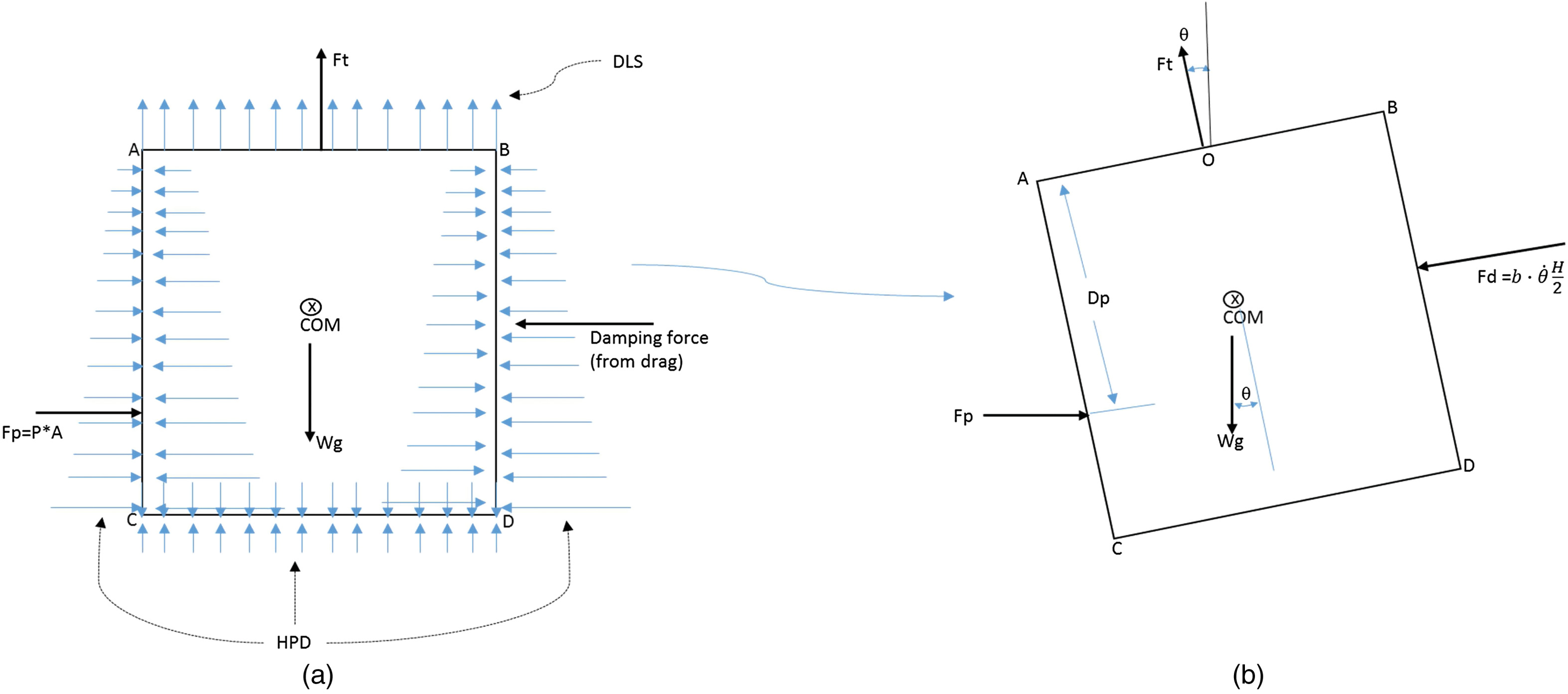Hydrodynamic and Structural Response Modeling of a Prototype